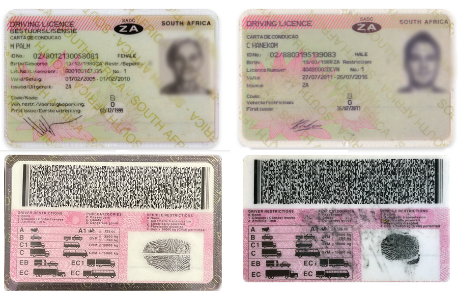Driver's licenses in Afrikaans