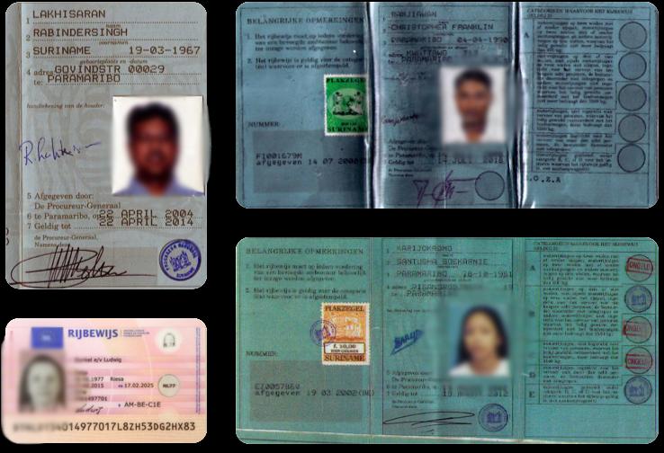 Водительские удостоверения на голландском